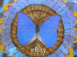 Super RARE Late 19th C Art Deco Brasilia Butterfly Table TOP / Circa 1890-1900